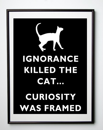 Ignorance killed the Cat